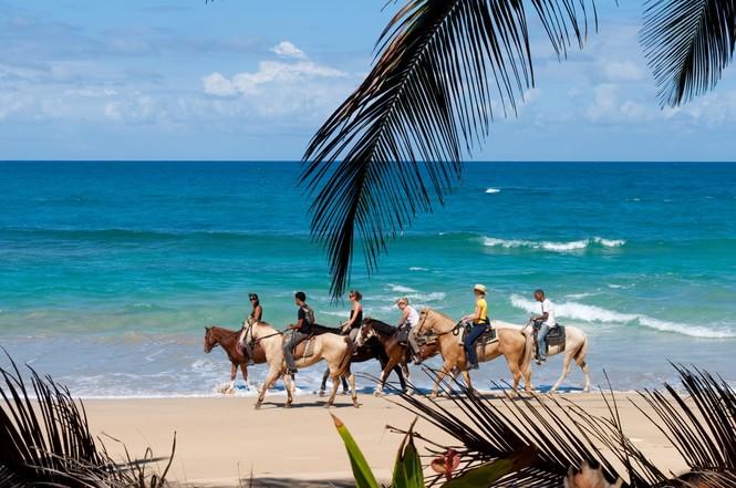 多米尼加的文化具体详细介绍