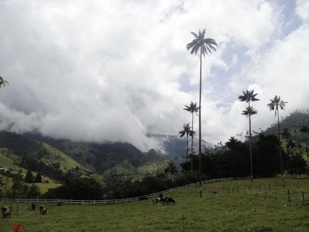投资移民哥伦比亚的前景介绍,哥伦比亚的投资前景备受青睐