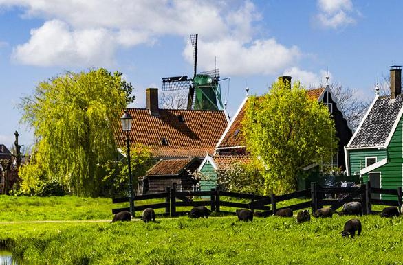 荷兰移民 荷兰荣登全球移民理想国!