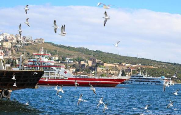 移民土耳其,只需25万美元就能拿海护身份?